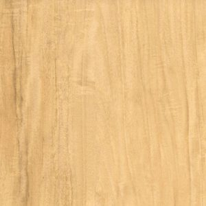 Cream Satinwood